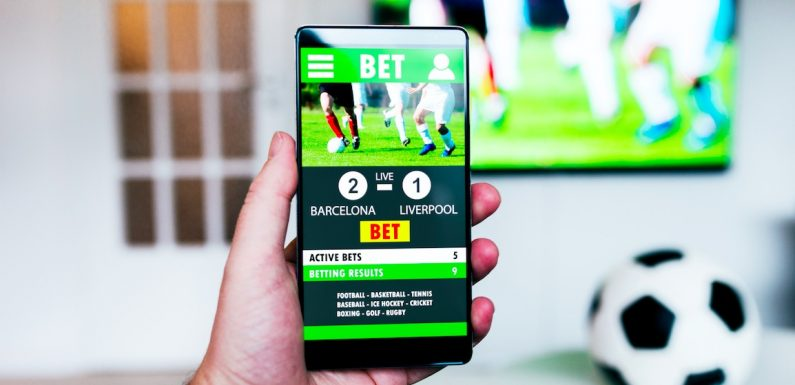 Learn How to Bet On Sports
